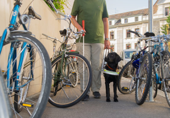 The guide dog leads a blind person along a pavement full of bicycles